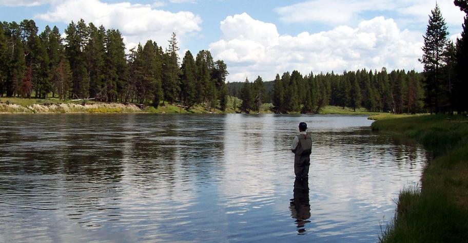 fiske laks 23.jpg