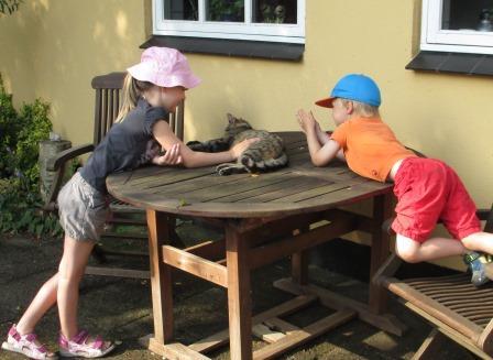 børn m kat.JPG
