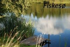 fiskesø.jpg